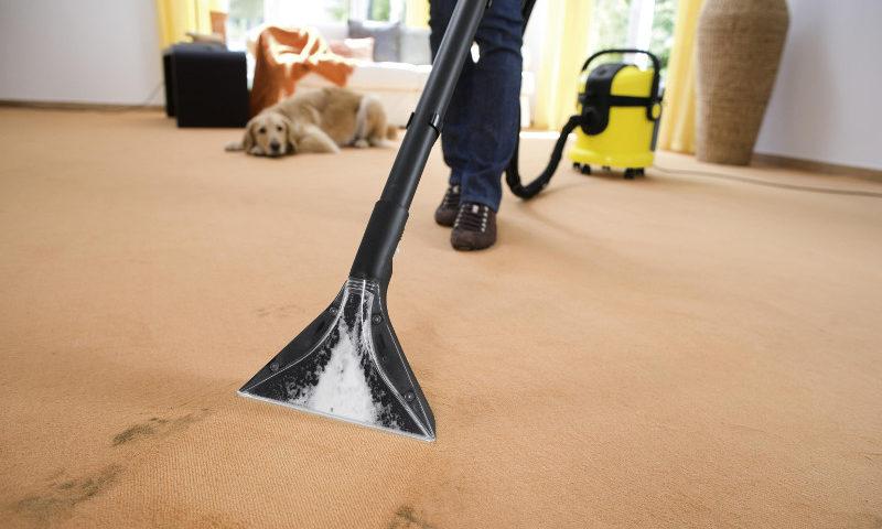 Химчистка ковровых покрытий и ковролина